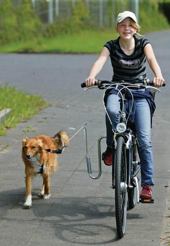DOGGY-SPRINTER Führhalter für Fahrräder